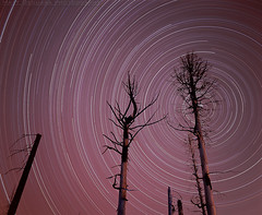 Charred Trees, Rebuilding Dreams (MattyD90) Tags: startrails trees sky charred burned film angorafire 2007 myers southlaketahoe lightpaint mediumformat provia velvia slide astronomy night clear meteor polaris rebuilding houses planet very long exposure landscape starcircle motion 120 6x7 mamiya stars southshore