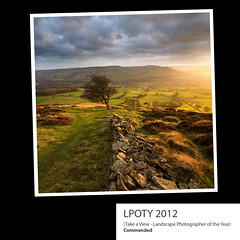 Take a View - Landscape Photographer of the Year (LPOTY) 2012 (Paul Newcombe) Tags: uk sunset tree print square landscape book published derbyshire award winhill 2012 commended landscapephotographeroftheyear lpoty paulnewcombe lpoty2012 commeneded