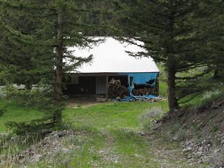 Montana Elk Hunt - Bozeman 18