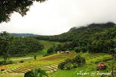 PhamonVillage-DoiInthanon-ChiangMai-Trip_By-P r i m t a a_E10886166-042