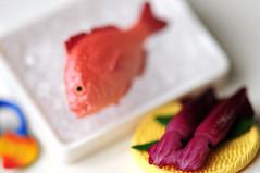(Sai / Rebecca) Tags: fish ice japan gnome box dwarf squid  d5000 kobitozukan