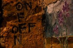 Ruvido (Sonia Golemme) Tags: italy wall downtown arts wallart off calabria centrostorico cosenza centrostoricocosenza