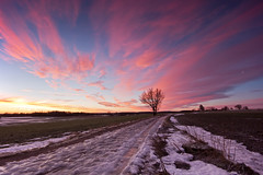 icy road (Andreas Hagman) Tags: morning pink blue winter sky orange snow tree green ice nature field clouds rural sunrise landscape dawn countryside sweden tripod peaceful nopeople calm colourful scandinavia slippery pinkclouds gravelroad beforesunrise uwa sigma1020mm stergtland ndfilter ultrawideangle gndfilter icyroad nordics vretakloster graduatedneutraldensity openlandscape sonyalphaslta77 mjlorp icygravelroad