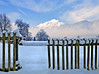 The first snow in this year ~ finally really winter! (rotraud_71) Tags: trees winter mountain snow fence berchtesgadenerland hochstaufen vanagram goldenart blinkagain besteverexcellencegallery
