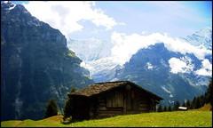 Almhütte, Grindelwald - Sommer 2005 (tor-falke) Tags: mountain schweiz switzerland europa europe suisse ngc berge grindelwald alpen alp alpin torfalke flickrtorfalke