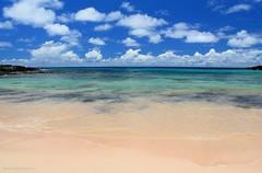 PLAYA ANAKENA | ISLA DE PASCUA (Pablo C.M || BANCOIMAGENES.CL) Tags: chile beach playa easterisland rapanui polinesia isladepascua anakena oceana playaanakena