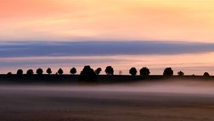 And in the end the love you take.... (Tobi_2008) Tags: sonnenaufgang sunrise himmel sky bume trees arbres nebel fog landschaft landscape natur nature sachsen saxony deutschland germany allemagne germania