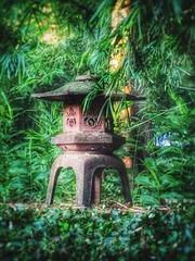 Rip Van Winkle Gardens Jefferson Island Louisiana Antebellum Home Mansion History 3BV7RT (Dallas Photoworks) Tags: rip van winkle gardens jefferson island louisiana subtropical lush