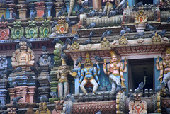 Detail of Carvings on the Temple Gopuram (VinayakH) Tags: halasurusomeshwaratemple bangalore india ulsoor chola vijayanagaraempire kempegowda hindu shiva temple hinduism