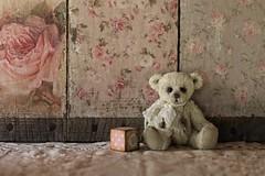 'B' is for Benni (s@ssyl@ssy) Tags: bear teddybear htbt sit sitting tabletop background decoupage skidboards block tinyblock b vintagelace