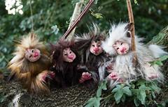 Grotto Group (Shirleys Studio | Handmade Art Dolls) Tags: shirleysstudio shirleys studio beeldende kunst art artist grotto troll ooak dolls trollen trolletjes boswezens fantasy doll artdoll trol trolls figurine handmade grottos