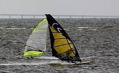 Windsurfing weather 1 (Ingrid Friis Photo) Tags: resundsbron oresundbridge vindsurfer vindsufare