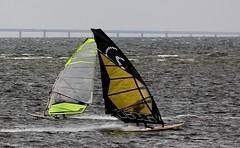 Windsurfing weather 1 (Ingrid Friis Photo) Tags: öresundsbron oresundbridge vindsurfer vindsufare