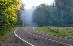 This Journey Isn't Over (John Westrock) Tags: road fog foggy morning trees rural fence pacificnorthwest washington canoneos5dmarkiii canonef2470mmf28lusm