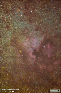The North America Nebula NGC 7000 in Cygnus