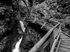 R6234220_medium_1600 (ThomasKrannich) Tags: austria carinthia raggaschlucht blackandwhite canyon hiking monochrome trail