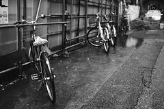 (Corblate) Tags: french girl travel tokyo japan asia rainy day black white nikon d5100 natural light bike street city