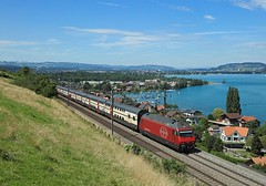 460 060, Spiez, 3 Aug 2016 (Mr Joseph Bloggs) Tags: sbb 460 460060 basel interlaken spiez bahn railway railroad train treno ic971 intercity inter city switzerland