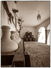 MAJUELO DESDE EL PORCHE (BLAMANTI) Tags: casas de viñas viñedos viticultura vino vendimia vinos viñe