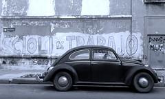 Boedo (clicks trifasicos) Tags: ferbarrientos argentina buenosaires boedo volkswagen escarabajo beetle wolfsburg blancoynegro blackandwhite ojoscitadinos