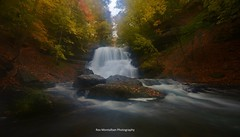 decew lower falls autumn (Rex Montalban Photography) Tags: autumn waterfalls decew nothdr rexmontalbanphotography thesecondorlowerwaterfall