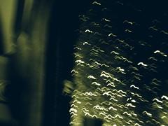morphosis (AllanPatrick) Tags: motion bus green window rain insect dead death cool chuva moth morte inseto janela conceptual noise mariposa onibus morto