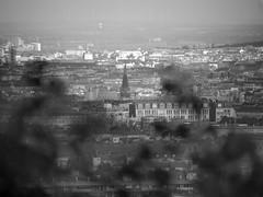 Vienna - Detail (hedbavny) Tags: city roof urban house blur town blurry fenster haus stadt aussicht turm dach bltter kirchturm unschrfe wilhelminenberg wienvienna fernsicht sterreichaustria paulinensteig