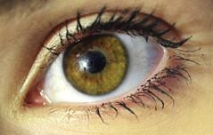 (Kirstenn!) Tags: macro reflection green eye hazel greeneye mascara bloodvessels hazeleye