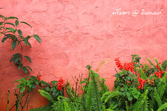 PhamonVillage-DoiInthanon-ChiangMai-Trip_By-P r i m t a a_E10886166-027