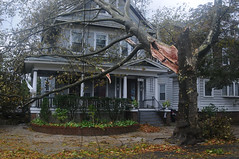 Hurricane Sandy and damage (russwxyz, formerly russ2243) Tags: wires brokentree damagedhome hurricanesandy