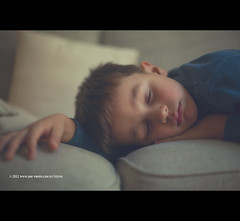 Sssshhhhh (.fulvio) Tags: family boy sleeping italy house home comfortable canon living child son sofa did closedeyes fulvio 5thyear ef50f14usm 5dmarkii gismaster wwwdofphotocom gettyportraits2012