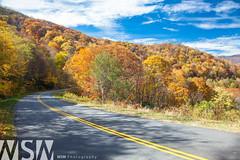 Blue Ridge Pkwy (Wizum) Tags: mountains fall nature landscape nc fallcolor northcarolina blueridgeparkway fall2012