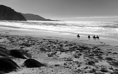 Beach Riders (Joe Josephs: 3,166,284 views - thank you) Tags: travel horses landscapes sand rocks beaches blackandwhitephotography californiacentralcoast californiabeaches travelphotography landscapephotography joejosephs nikond800e nikon2485vrii