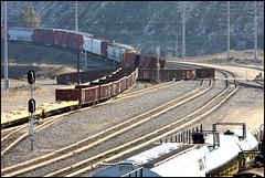 Derail at West Colton (greenthumb_38) Tags: up yard unionpacific bloomington derail sd40 yardjob 700200mm yardgoat canon40d westcolton jeffreybass yardgoats westcoltonyard minorderail