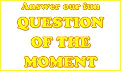 Answer Our Fun Question the Moment (Enokson) Tags: school fiction 6 signs window phoenix sign yellow fun book student order notes you library libraries board magic ministry harry potter note displays question signage series choice schools bulletinboard moment professor choices would vote interactive hogwarts six dolores magical punishment voting snape punish bulletin dt decision fictional rather juniorhigh participation severus decisionmaking librarydisplays punished umbridge librarydisplay wouldyourather studentparticipation teenlibrary juniorhighschools schooldisplay middleschoollibrary middleschoollibraries schooldisplays teenlibraries signslibrary vblibrary juniorhighlibraries juniorhighlibrary enokson librarydecoration questionofthemoment hogwarts