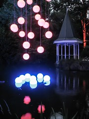 reflection of victorian (GIALIAT) Tags: pink blue red plants white black green water animal yellow gardens night fun botanical lights concert pond bush magic creative january event blacklight wellington local duckpond asb beegees 2013 gialiat pallion lightshop silverfx