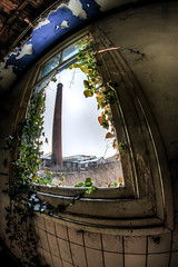 Chimney (EyeC4ndy) Tags: winter chimney urban abandoned netherlands hospital exploring 8mm ziekenhuis psychiatric pz bloemendaal urbex samyang psychiatrisch