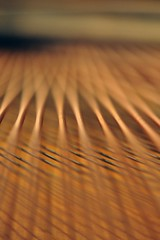 Intersection (mikael_on_flickr) Tags: abstract detail golden piano intersection astratto kreuzung abstrakt crossover corde particolare grandpiano flygel dorato gylden intersezione pianostrings krydsfelt pianoforteacoda concentrationpoint klaverstrenge