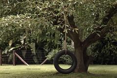 More Swings II (Enguee) Tags: trees nature wheel children swings forgotten melancholy chidhood