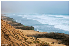 from salalah (durooob) Tags: life sea beach nature beauty natural salalah