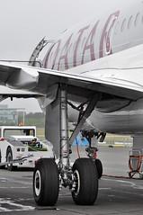 Airbus A319-133(LR) (A380spotter) Tags: undercarriage landinggear maingear wing airbus a319 100lr 100 a7cja  alhilal qatar  qatarairways qtr qr  qatarexecutive qqe qe staticdisplay fia16 sbacfarnboroughinternationalairshow2016 taglondonfarnboroughairport eglf fab