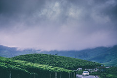 DSC01589 (Sujith Ninan) Tags: travel photography sony sonya6000 35mm 16mm kerala india munnar landscapes monsoon vsco asia friends digital flower sky tree green mountians portrait family roadtrip road car bw new me