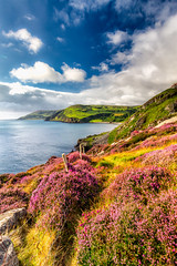 From Torr to Cushendall (Glen Sumner Photography) Tags: shoreline color calm cliffs water cushendall colour vista abandoned ocean vast shore torr green rugged glens antrim sea
