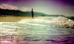 (Victoria Yarlikova) Tags: outdoors ilford analog expired film pellicola iso100 purple 35mm smallformat scan analogphotography helios beach grain retro vintage darkroom zenit traditionalprocess
