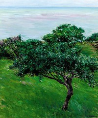 Gustave Caillebotte  Apple Trees on the Edge of the Sea, Trouville, 1880. Painting: oil on canvas, 65.3 x 54.6 cm. Private collection. LandscapeWaterscape1880s (ArtAppreciated) Tags: fineart painting blogs tumblr artblogs artappreciated artoftheday artofdarkness artofdarknessco artofdarknessblog gustave caillebotte impressionism french artists art history modern 19th century