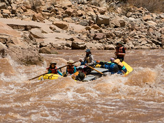 Cole in the Hole (strayfoto) Tags: ifttt dropbox strayfoto photography utah quinnhall joebennion colebarton tourwest river coloradoriver cataractcanyon july 2016 rapids milelong satansgut outdoors campvibes camping adventure travel tourism vacation whitewater rafting moab canyonlands arches muddyriver bigdrops oars rafttrip usa
