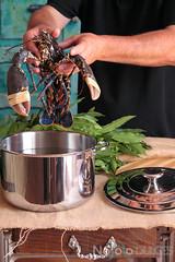 Ensalada de bogavante, ctricos y frutos rojos (No solo dulces) Tags: receta bogavante ensalada verano nochevieja vinagreta naranja frutosrojos frambuesa langosta nochebuena
