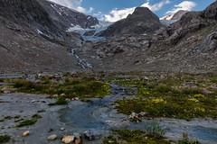 Glacier (Role Bigler) Tags: alpen alps berge canoneos5dsr glacier natur nature schweiz steingletscher suisse sustenpass switzerland canonef1635isusm gletscher mountains steinglacier susten swissalps