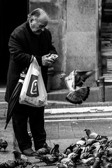 Les pigeons de Madrid II. (Bouhsina Photography) Tags: rue street black white bw madrid espagne pigeons vol flying nouriture bouhsina bouhsinaphotography canon 5diii