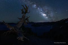 Crater Lake night (Maurizio Fontana) Tags: usa oregon lake crater craterlake milkyway notte night star stars stelle cielo sky nigthsky nikon d800